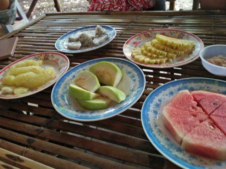 メコンデルタツアー フルーツ試食と民謡