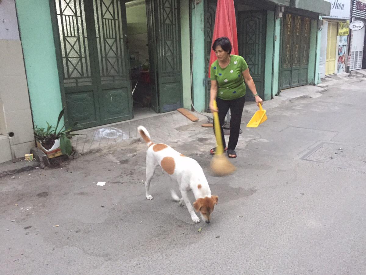 ベトナム 予防接種 犬