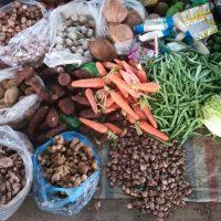 ベトナム北部・サムソン市のローカル市場と食卓