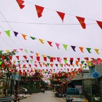 ベトナム北部・サムソン市でテト(旧正月)を体験
