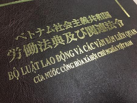 ベトナム 労務 就業規則編 キャストベトナム 島﨑