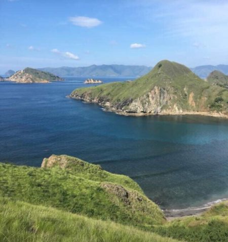 ベトナム ホーチミン コモド島 コモドドラゴン 行く旅