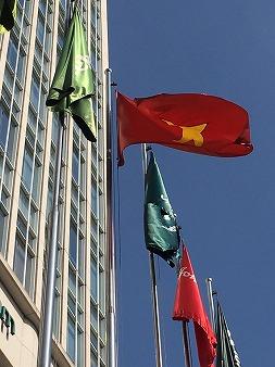 ベトナム 有限責任会社 株式会社 委任代表者