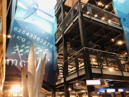 海藻をイメージしたオブジェと海底のイラストが描かれた書店内のインテリア