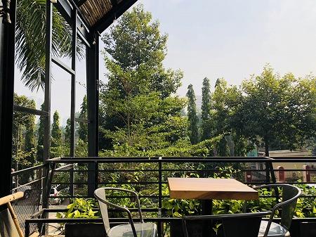 カフェから見える木々と空の景色