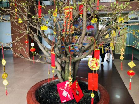 正月の飾りがついた木