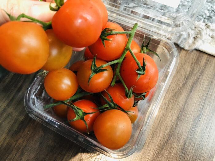 枝付プチトマト